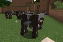 我的世界如何养牛 图文介绍教你如何养牛