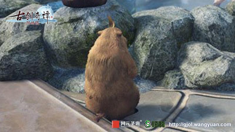 《古剑奇谭OL》爆料致敬玩家泪目视频联动嘉年华曝光4款柿饼汤泉