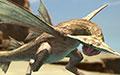 怪物猎人OL鱼龙种沙龙王属性技能资料详解