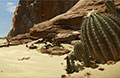 怪物猎人OL常规狩猎场雷鸣沙海地图资料介绍