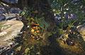 怪物猎人OL猎人庄园育菇木床系统资料详解