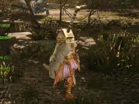 怪物猎人OL初阶河狸兽铠甲属性技能详解