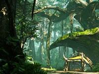怪物猎人OL隐士之森全部素材采集大全