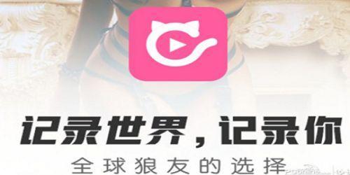 快猫官网在线登录 快猫官网下载