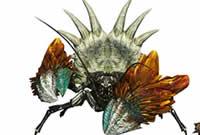 怪物OL狩猎精英训练营 太刀单刷葵盾蟹教学