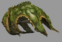 怪物猎人OL新内容抢鲜看 S级浮岳龙讨伐