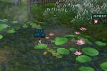 剑网3梦回稻香雨花石在哪 剑网3雨花石位置