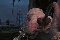 桃毛兽王讨伐攻略 怪物猎人OL臭气贪食者