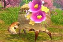 剑网3宠物奇缘关外商 是一个可爱的寄居蟹