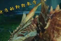 怪物猎人ol 激斗太刀G1六星炎轰龙白金