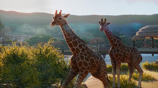 动物园之星PC版在哪买 动物园之星PC版购买地址