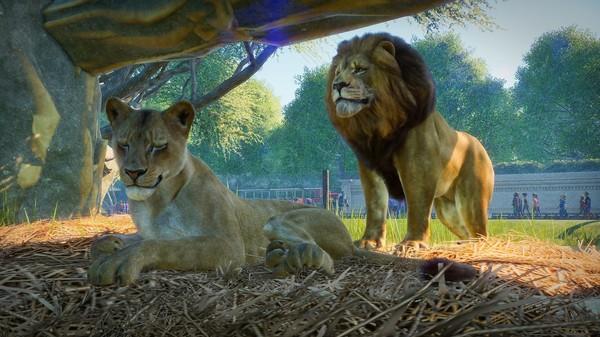 动物园之星PC版售价一览 动物园之星PC版多少钱