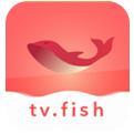 大鱼影视最新版app