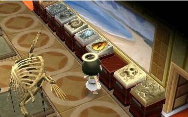 动物之森化石怎么获得 集合啦动物森友会化石获取方法
