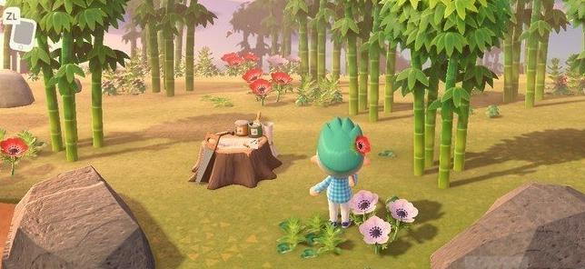 动物之森竹子岛怎么找 集合啦动物森友会竹子岛寻找方法