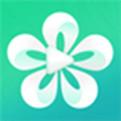 朵朵直播网页版