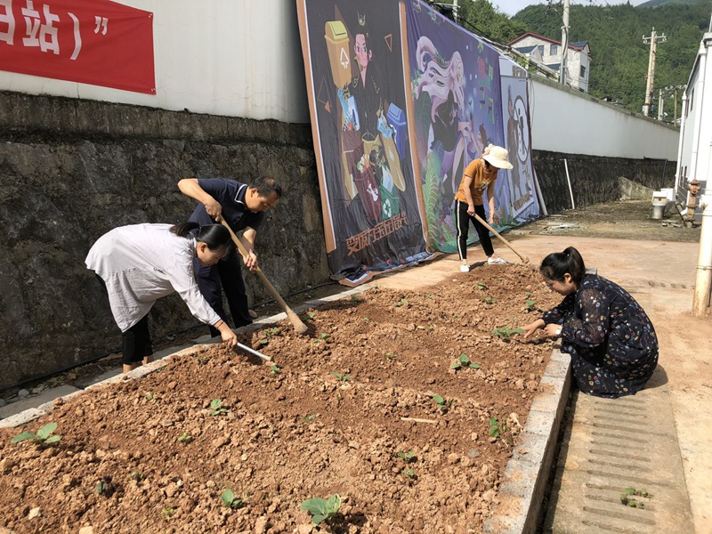 """播种关爱 《剑网3》携手青基会共建""""希望菜园"""""""