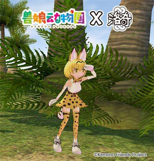 《洛奇》爱琳动物园?薮猫与你的完美邂逅!