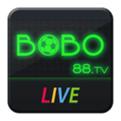 bobo直播网页版
