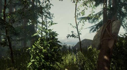 森林the forest浣熊位置介绍 the forest浣熊在哪可以抓到