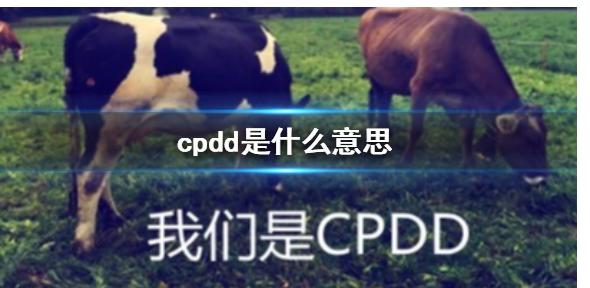 抖音cpdd是什么梗 抖音cpdd梗科普
