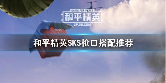 和平精英SKS适合什么枪口配件 SKS枪口配件介绍