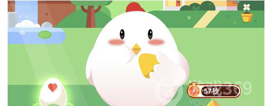 无公害蔬菜和绿色蔬菜哪个安全等级更高 支付宝小鸡答题9月21日问题