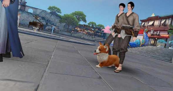 天谕手游苏澜城的猫在哪里 天谕手游苏澜城的狗位置介绍