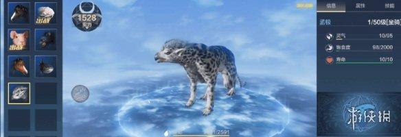妄想山海无氪玩家宠物推荐 有哪些平民也能获得的强力宠物