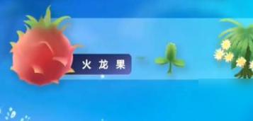 摩尔庄园手游火龙果获取方法介绍 火龙果作用详解