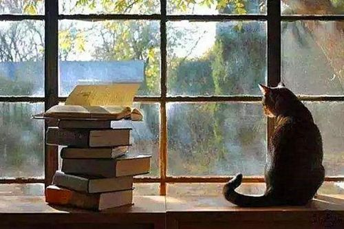 海棠书屋御宅屋小说自由阅读 海棠书屋全本小说免费阅读