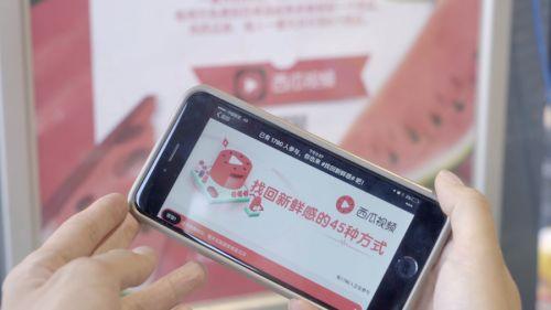 西瓜视频app下载最新下载 西瓜视频官网在线安装注册